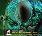 Yousef Al Habshi: Macro Photography